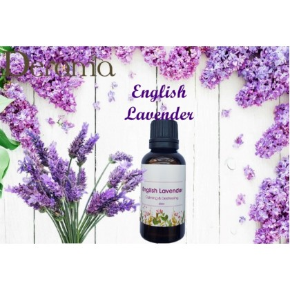 Air Freshener Air Purifier For Drop Any Essential Oil (650ml)