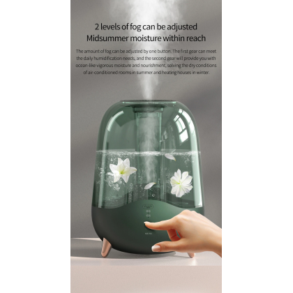 Deerma F329 Air Humidifier 5L Large Transparent Water Tank - Green or + Deroma Essential Oil 30ml